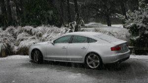 מכונית בחורף – כיסוי לנזקי סופה